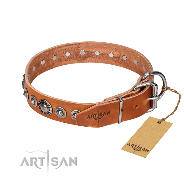 Tear-proof leather collar for your gorgeous canine