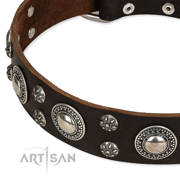 Snugly fitted leather dog collar with extra strong rust-proof buckle and D-ring