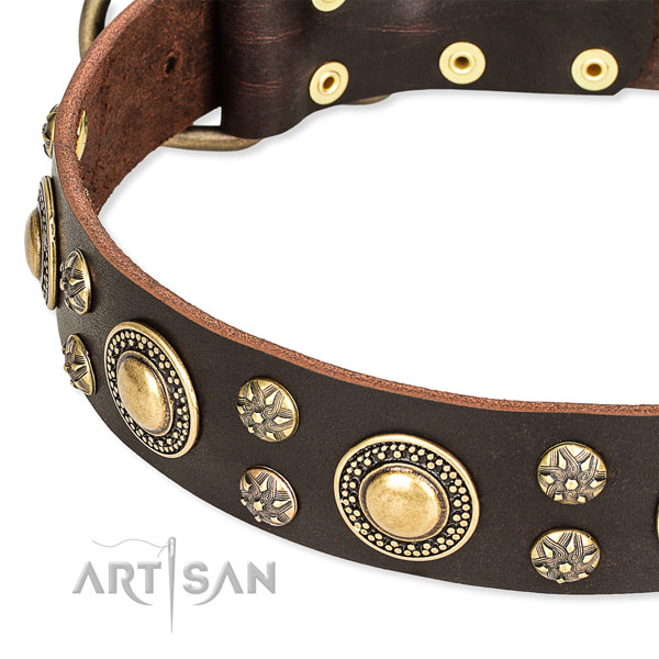 Easy to put on/off leather dog collar with extra sturdy fittings