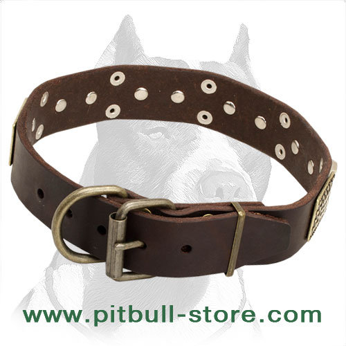Leather Dog Collar for Pitbull walks and training in vintage style