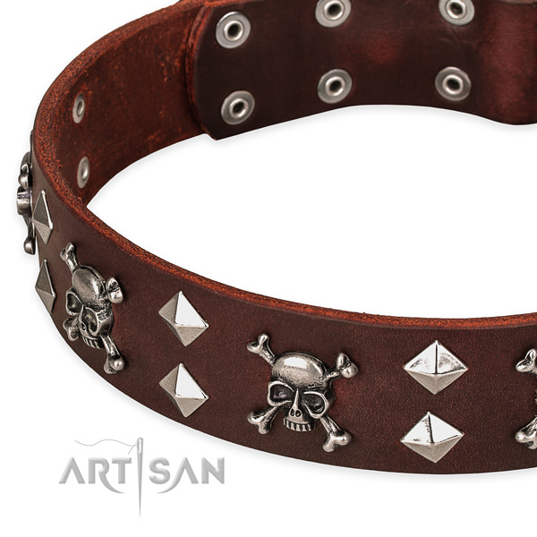Everyday leather dog collar for reliable use