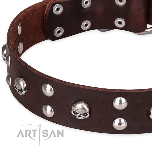 Leather dog collar with smooth edges for convenient daily walking