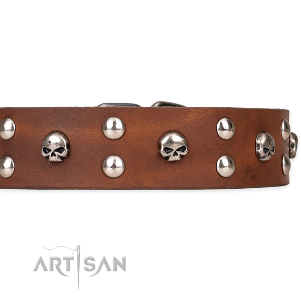 Hardwearing leather dog collar with sturdy details