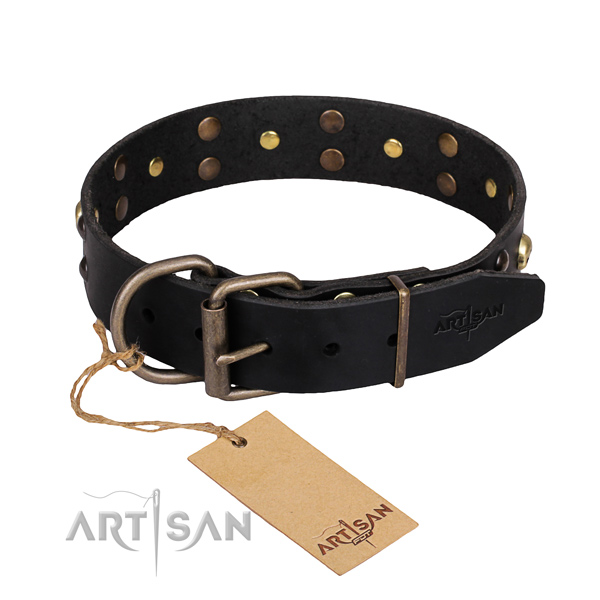 Indestructible leather dog collar with corrosion-resistant hardware