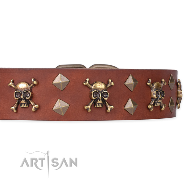 Daily leather dog collar for safe pet control