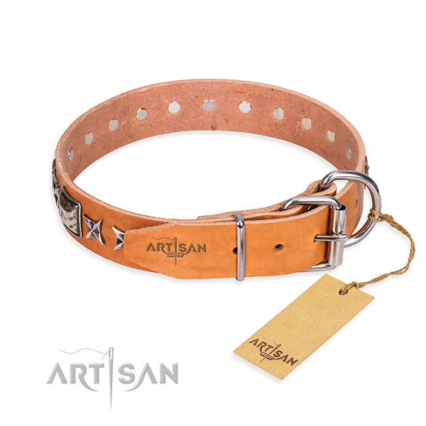 Wear-proof leather collar for your favourite four-legged friend