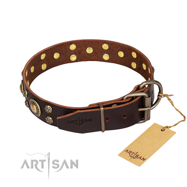 Multifunctional leather collar for your noble dog