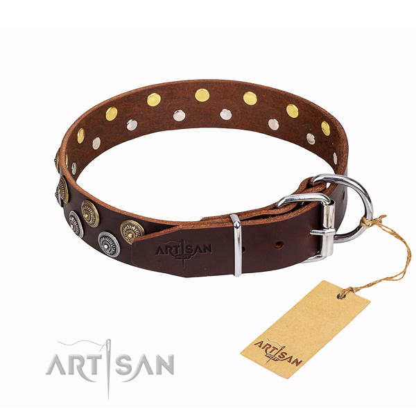 Tear-proof leather collar for your elegant four-legged friend