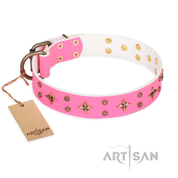 Strong leather dog collar with strong details