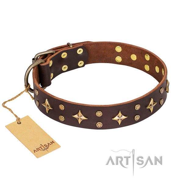 Long-wearing leather dog collar with brass plated elements