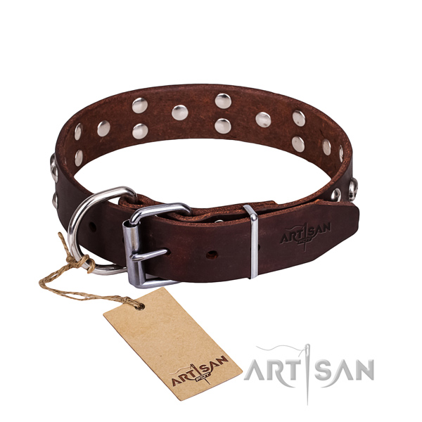 Fancy leather dog collar for training