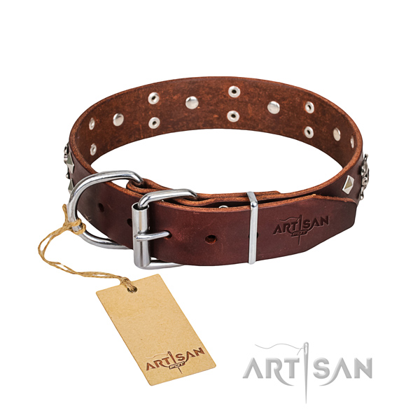 Reliable leather dog collar with brass plated hardware