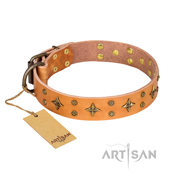 Reliable leather dog collar with non-corrosive fittings