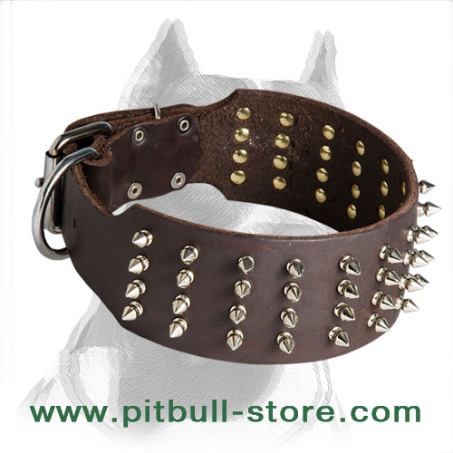 Wide walking Pitbull dog collar with spikes