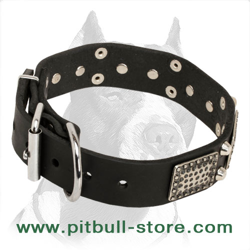 Dog collar for Pitbulls, perfect weight and size to withstand big load