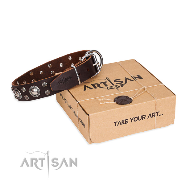 Daily leather dog collar with extraordinary adornments