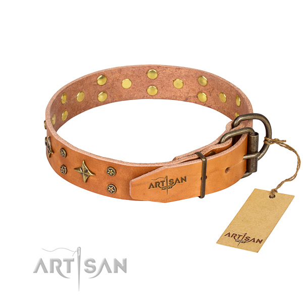 Functional leather collar for your darling four-legged friend