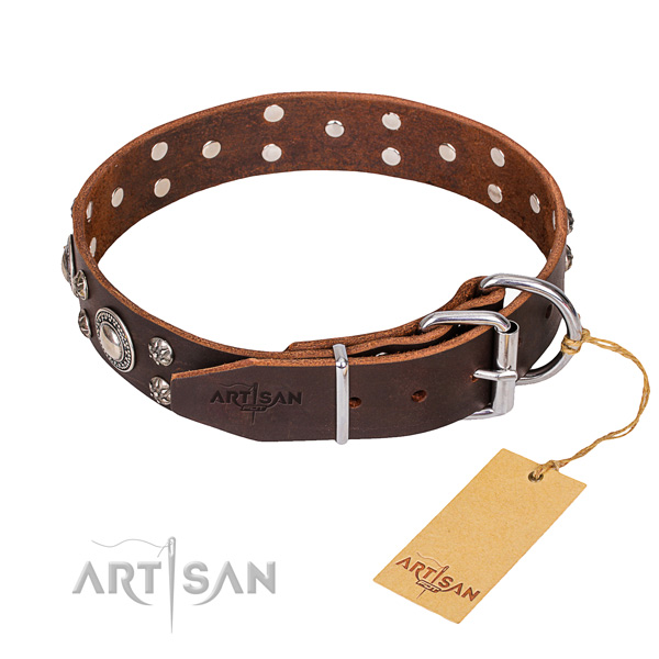 Genuine leather dog collar with polished surface