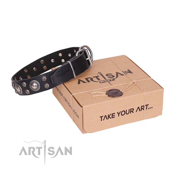Casual leather dog collar with cute adornments