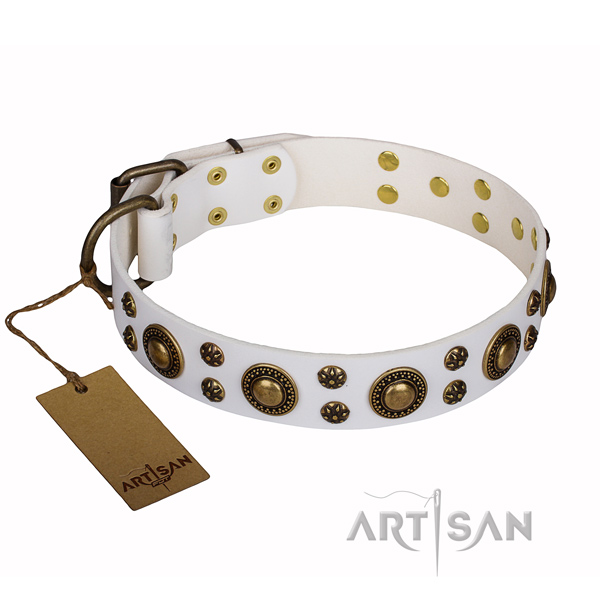Long-wearing leather dog collar with strong details