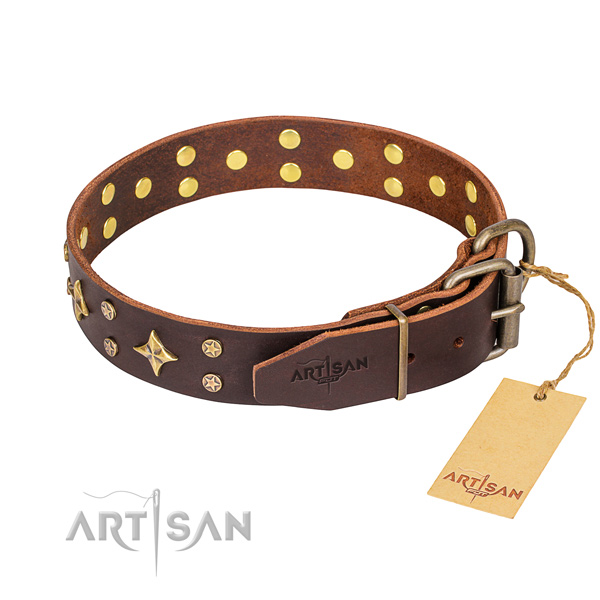 Daily leather collar for your handsome four-legged friend
