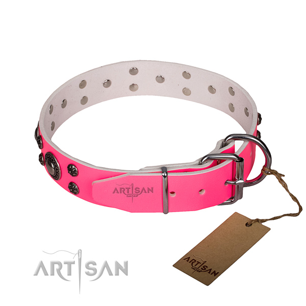 Versatile leather collar for your gorgeous canine