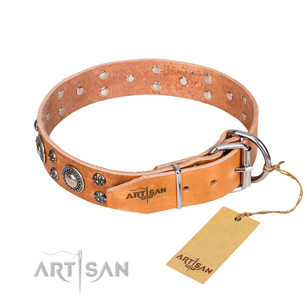 Versatile leather collar for your darling dog