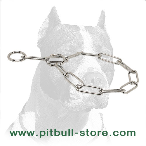 Dog chrome plated choke collar for Pitbulls