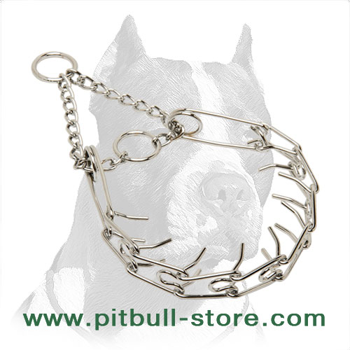 Pit Bull dog pinch collar of non-deforming steel