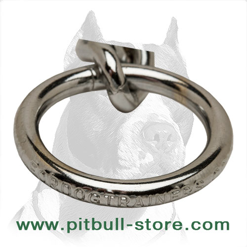 Pit Bull dog choke collar's ring to clip the lead
