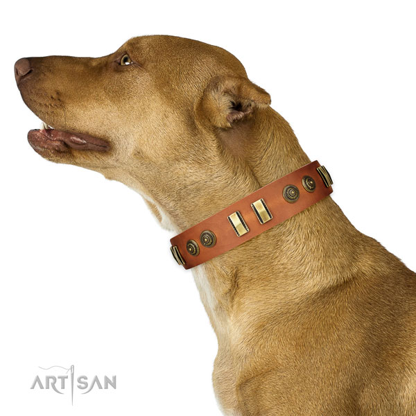Corrosion proof hardware on genuine leather dog collar for walking