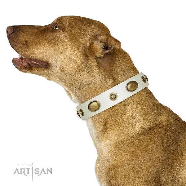 Easy wearing dog collar of natural leather with fashionable decorations