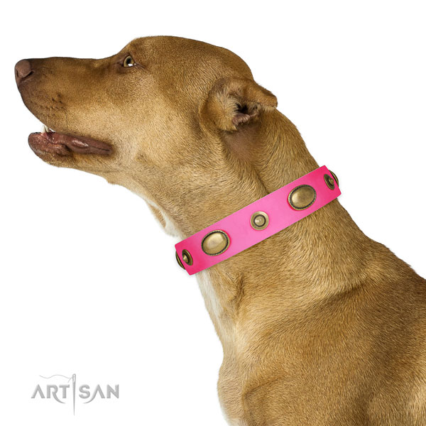 Basic training dog collar of genuine leather with stylish design decorations