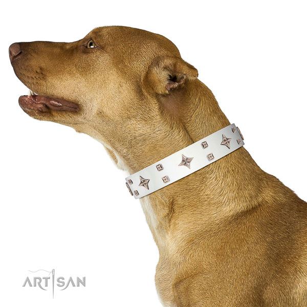 Genuine leather dog collar of soft to touch material with unusual adornments
