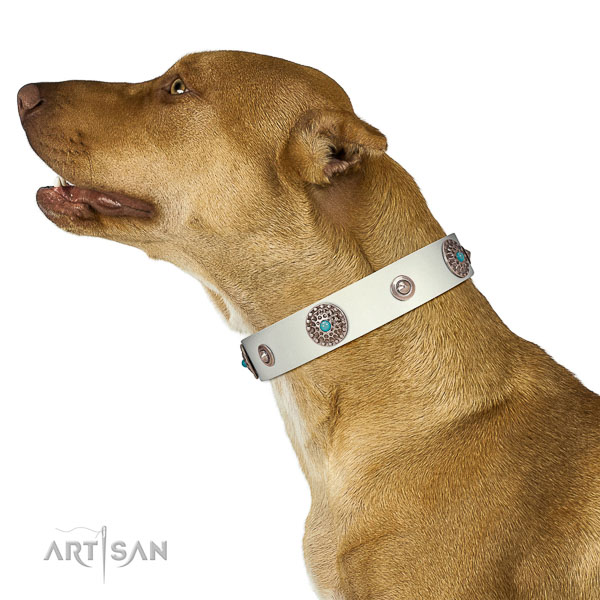 Handmade dog collar of natural leather with decorations