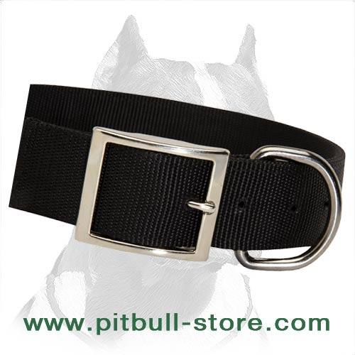 Excellent all-weather Collar