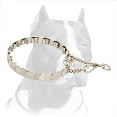 Pitbull Solid Stainless Steel Pinch Collar