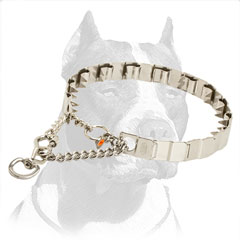 Pinch Collar Stainless Steel Collar for Pitbull