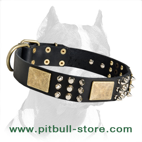 Special Collar for your dearest Pitbull
