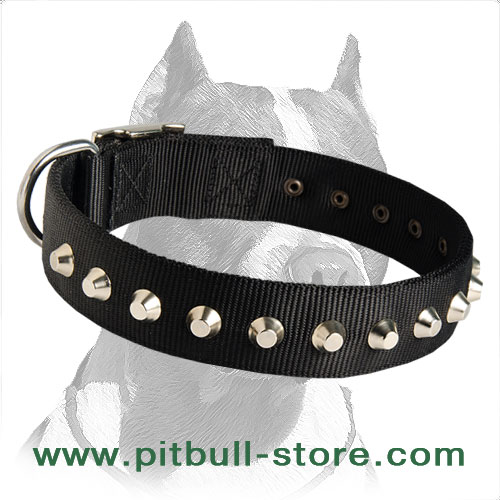 Quality Collar for active Dog