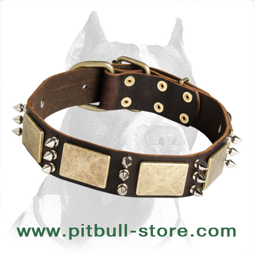 Comfortable to wear Leather Dog Collar