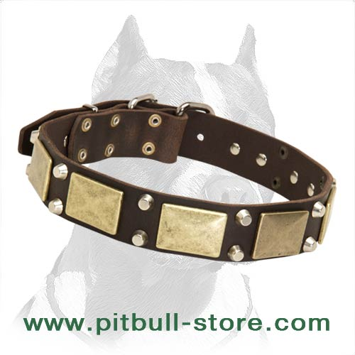 Great Design Leather Dog Collar