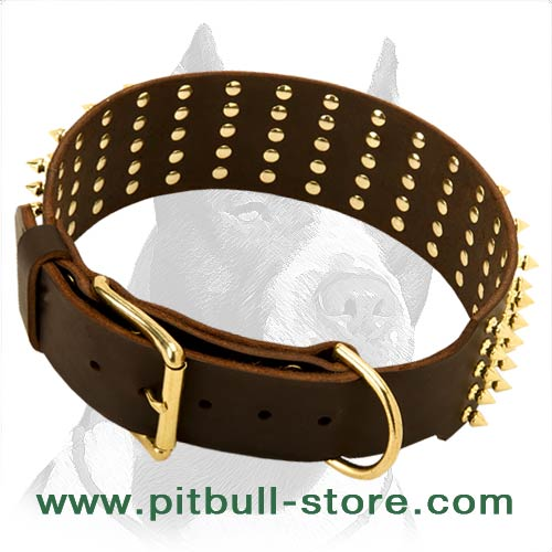 Premium Graid Leather Dog Collar
