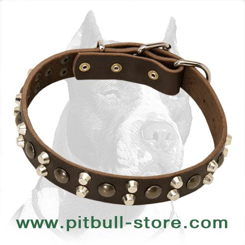 Soft and flexible Leather Dog Collar
