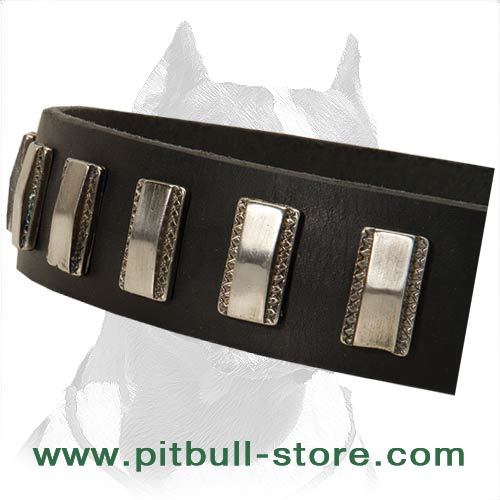 Robust Collar of Distinctive style