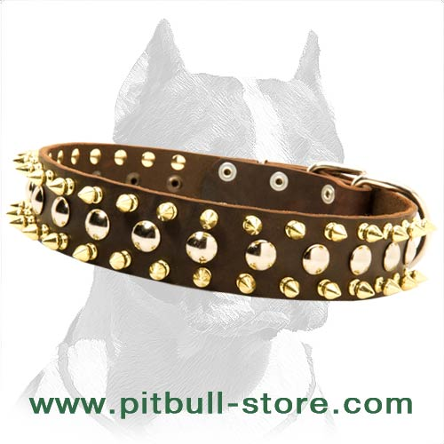 Richly Decorated Leather Dog Collar