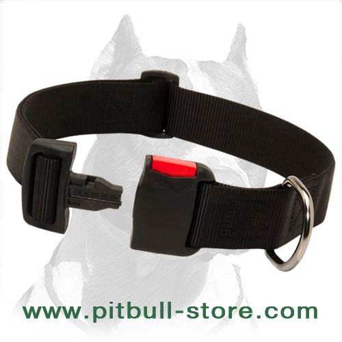 Lightweight Collar of Nylon