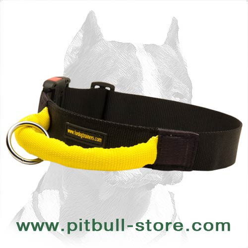 Cool Collar for everyday activities