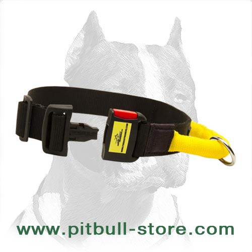 Functional Dog Collar of Nylon