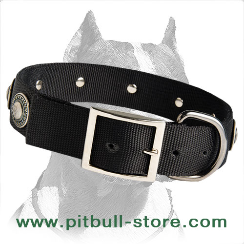 Functional Collar of extra strong Nylon
